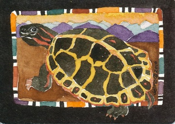 Painted Turtle by Gretchen Del Rio c 2010, rights reserved