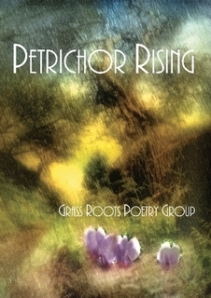"""Petrichor Rising"" and how the Twitterverse birthed friendships that in turn birthed a poetry collection"